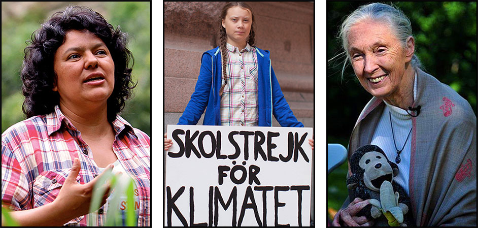 16 women environmentalists, guardians of the planet: