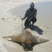 The correct handling of sharks and rays – by Stefan Oosthuizen